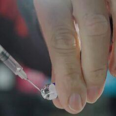Solicitan informes sobre el Calendario Obligatorio de Vacunación